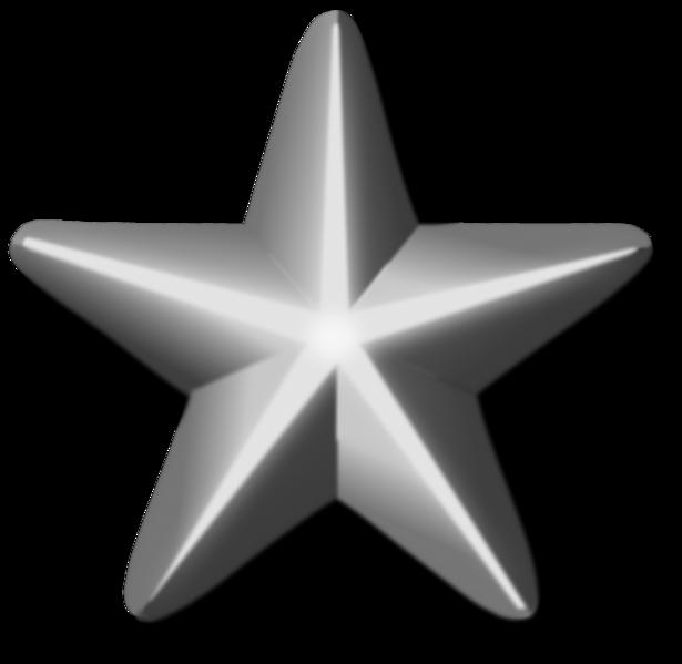 Silver Service Star